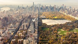 New York City Central Park Dividing Line