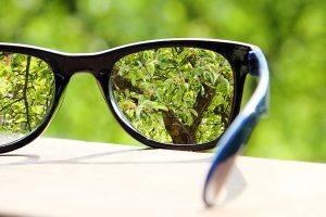 Focused glasses on green leaves